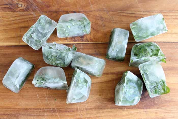 Freezing Herbs: An easy way to preserve those fresh herbs!