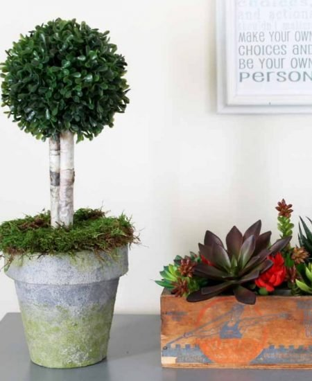 Make this boxwood topiary in a faux concrete pot! Perfect for your farmhouse style home.