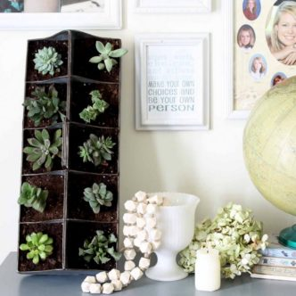 Make your own indoor succulent garden with our ideas!