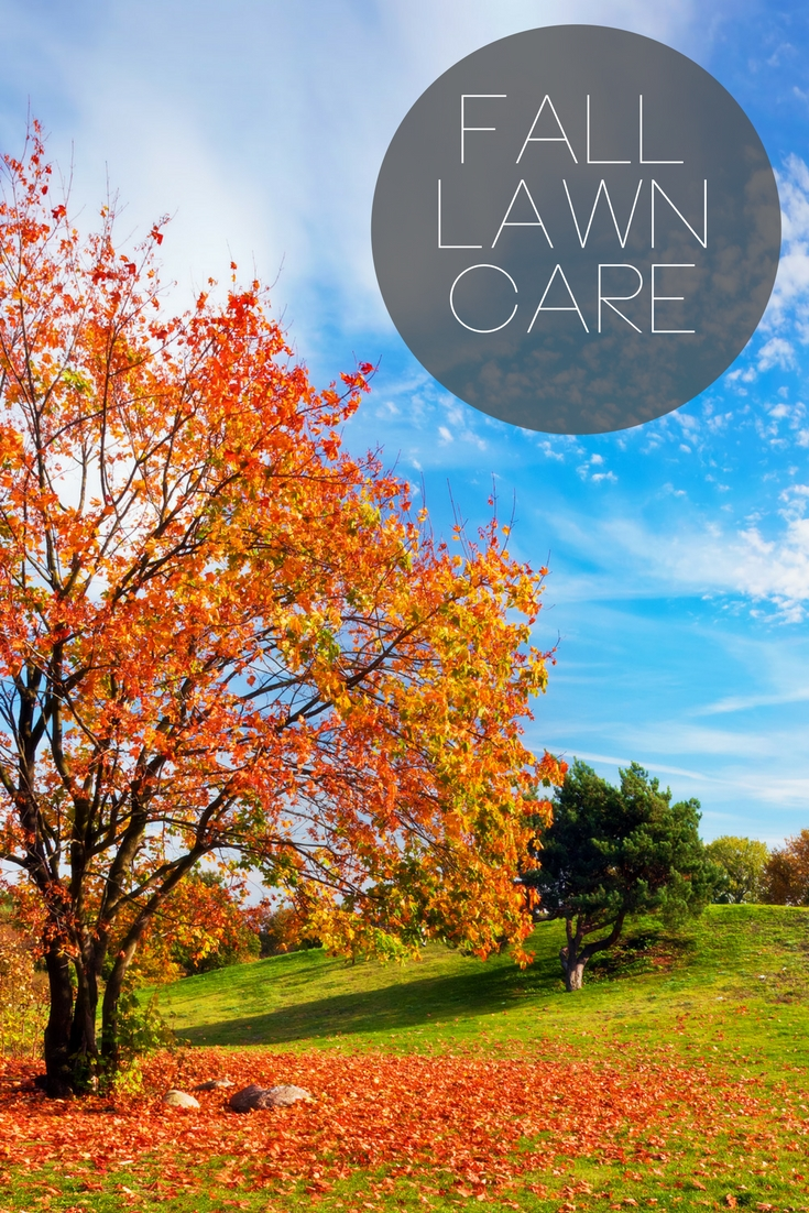 Fall Lawn Care - the details you need to know for the upcoming season change!