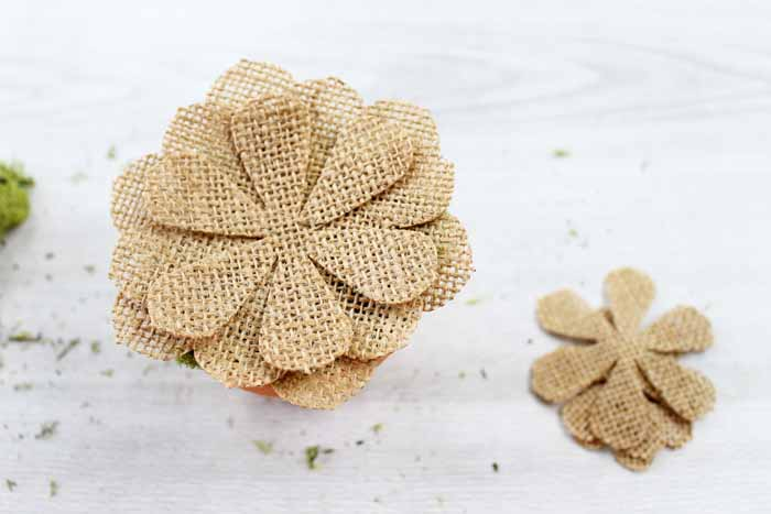 Make this burlap succulent decor for your home in just minutes! A quick and easy project using your Cricut Maker!