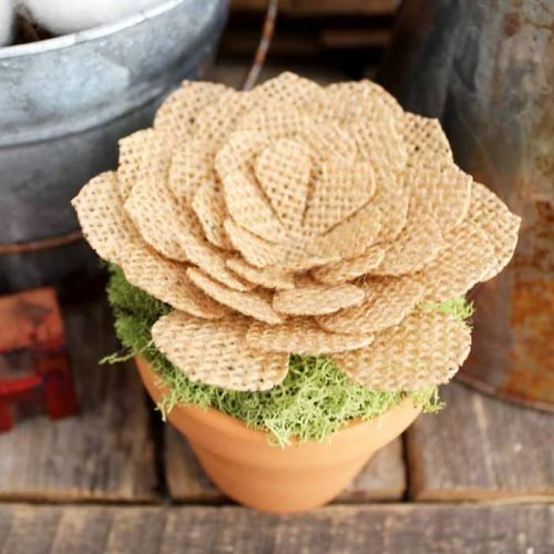 close up shot of a burlap flower in a small pot on a weathered wood backdrop