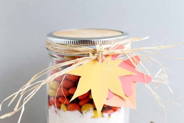 Create a fun fall gift with these Reeses Pieces Cookies in a jar! Decorate with colorful leaves and string