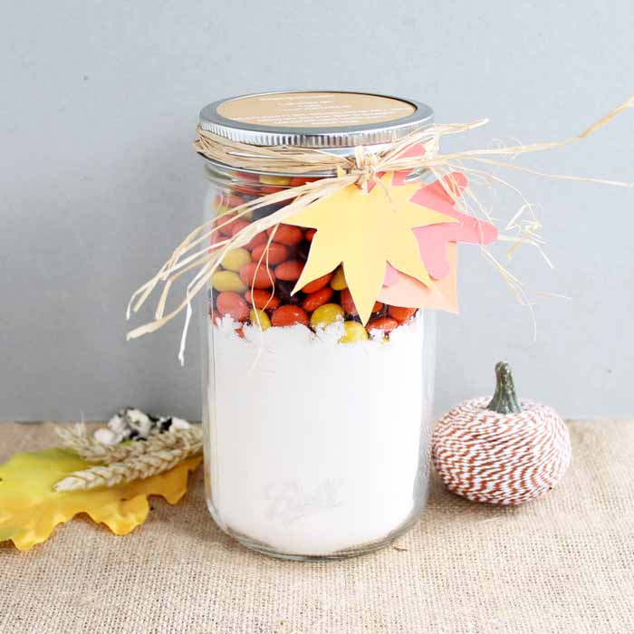 These Mason Jar Cookies are a perfect gift that's easy to toss together!