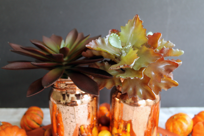 metallic mason jars with succulents in front of gray backdrop