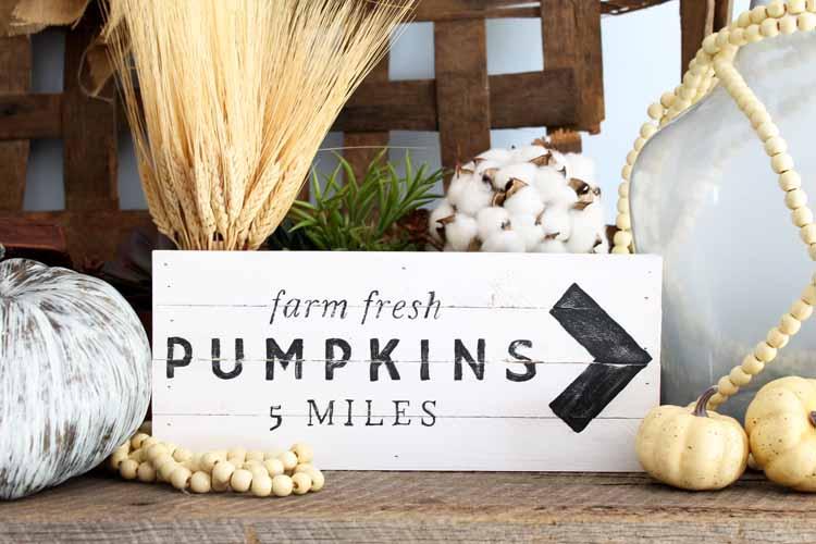 fall pumpkin patch sign