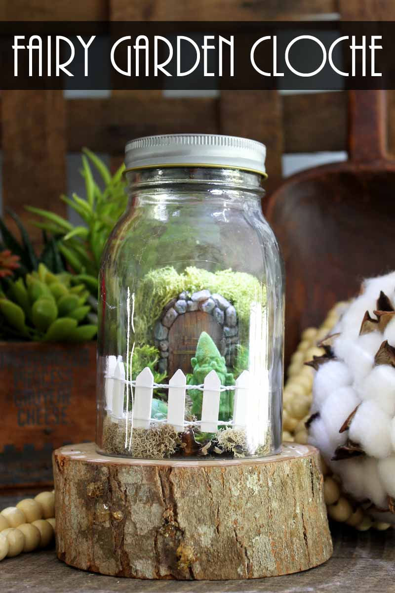 Make a mini fairy garden in a jar! A cute cloche idea with a solar powered light as well!
