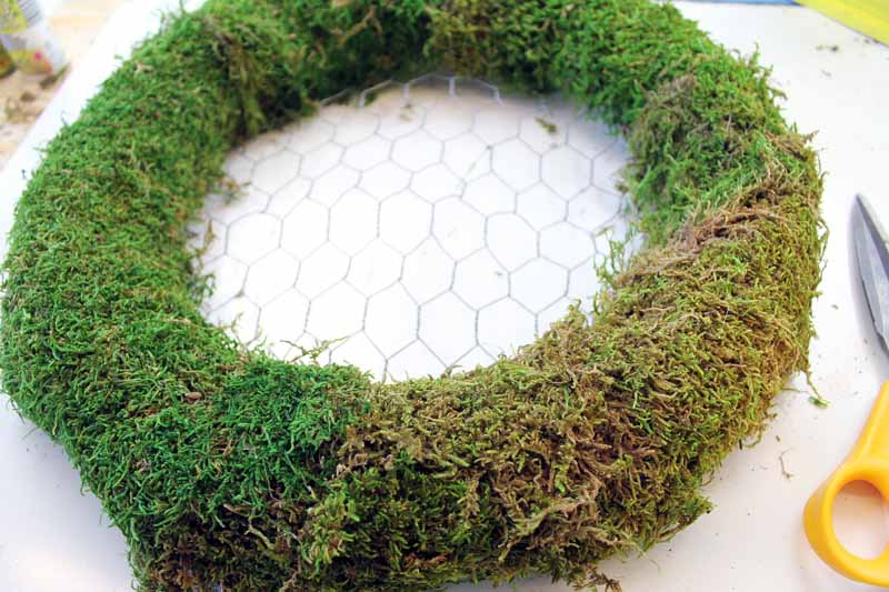 Spring wreath ideas: Hang a fairy garden on your door! Make this great wreath with these step by step instructions!
