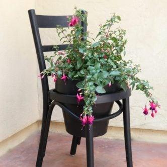 clay pot chair planter