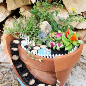 fairy garden with a pool
