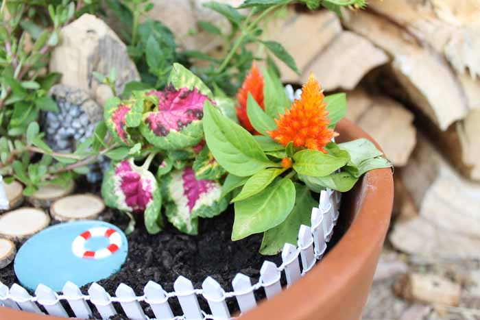 A close up of a flower pot turned into a fairy garden