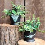 You can add pot decoration to any planter in just 15 minutes or less with Chalk Couture! See how here!