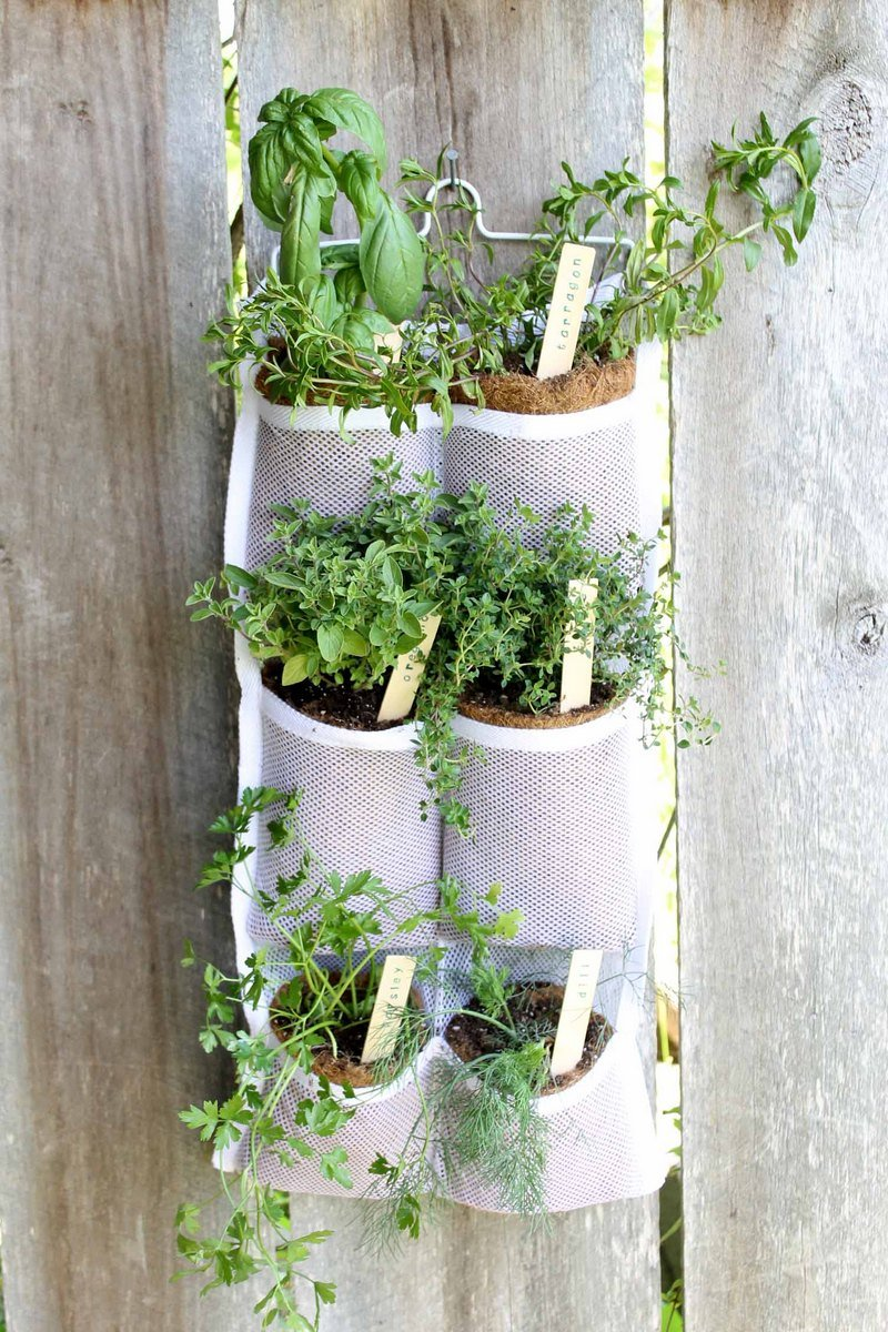 hanging herb garden with labels