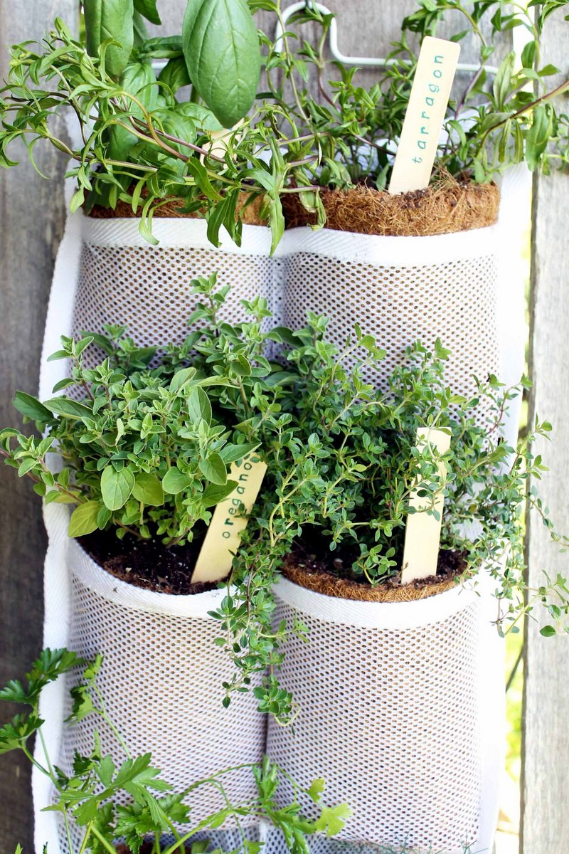 hanging herb garden on fence