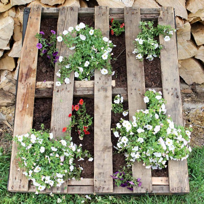 Make a pallet garden for your home this summer with these DIY instructions! A great way to add rustic charm to your outdoor space!