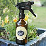Essential Oil Insect Repellent Recipe