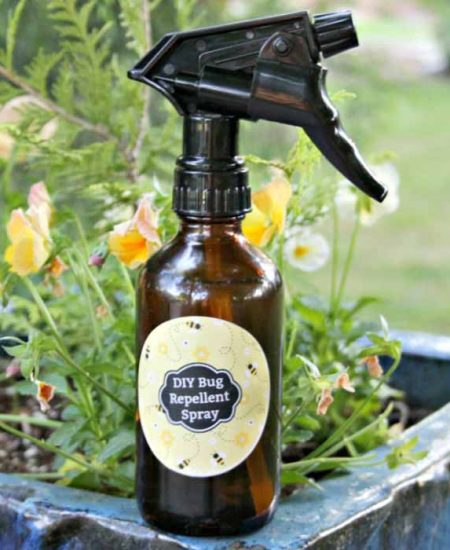 Whip up this essential oil insect repellent and add to a spray bottle! You can even add our free printable label! This all natural bug spray recipe really works for repelling mosquitoes and more!