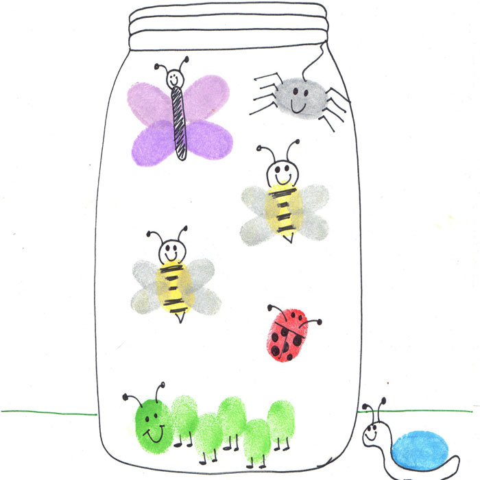 insect jar