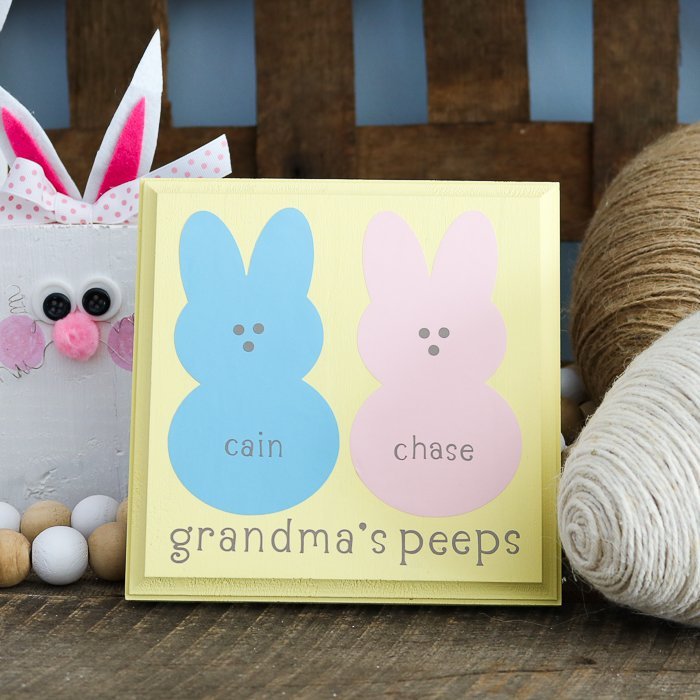 Make DIY gifts for grandma on Mother's Day with this step by step tutorial! Easy to make grandma's peeps sign with your Cricut.
