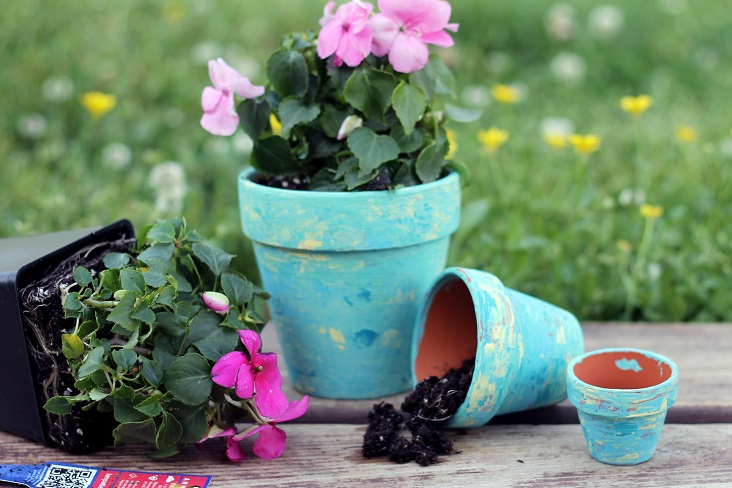 These container garden ideas are perfect for your home.