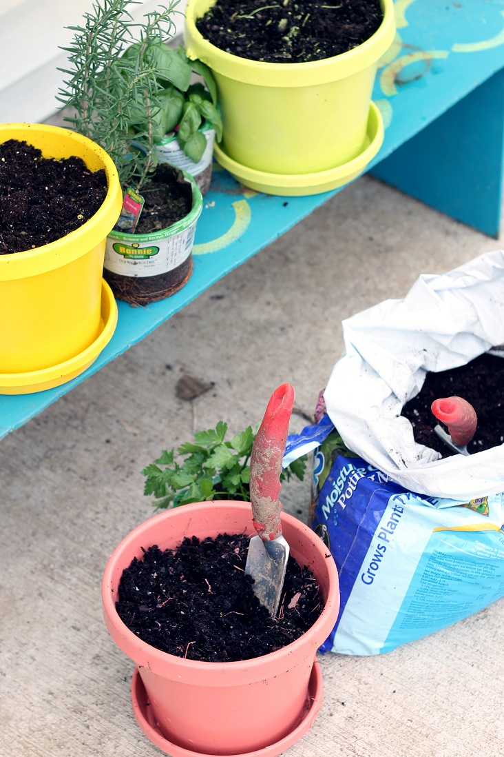 Our container herb garden ideas will leave you with fresh herbs right at your back door.