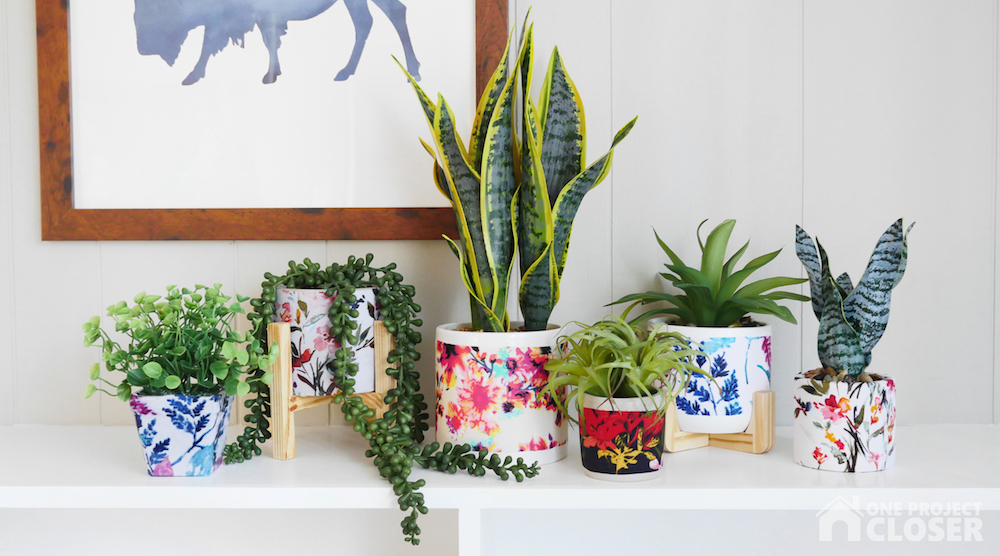 plants in decoupage planters