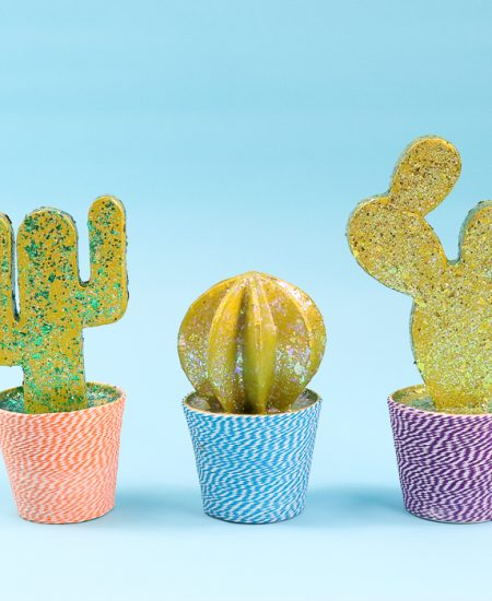 Cactus room decor perfect for a teen's room!