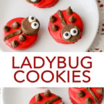 Learn how to make ladybug cookies from Oreos! A quick and easy spring time dessert! #cookies #spring #ladybug