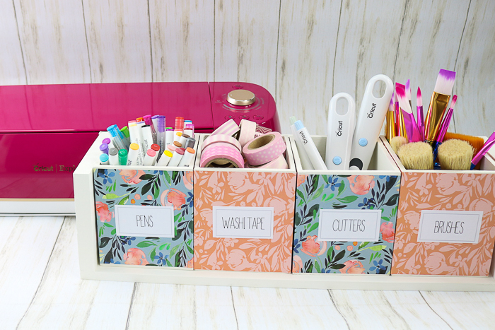 Cricut Explore Air 2 in Wild Rose with a cut craft organizer.