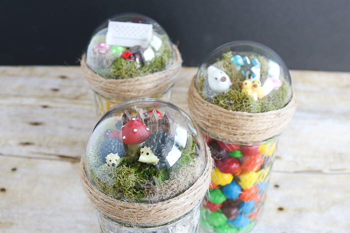 mason jar gift ideas with a small fairy garden on top under a dome