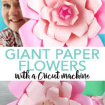 Love the look of giant paper flowers? Learn how to make paper flowers with your Cricut machine easily! #cricut #cricutmade #paper #paperflowers #flowers #party
