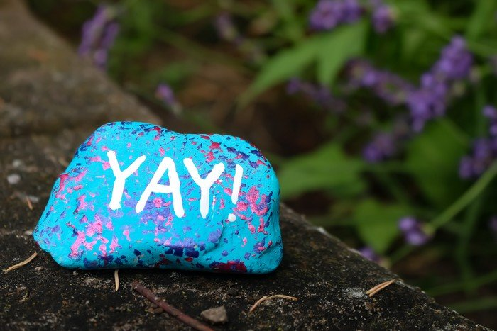 painting rocks dollar store