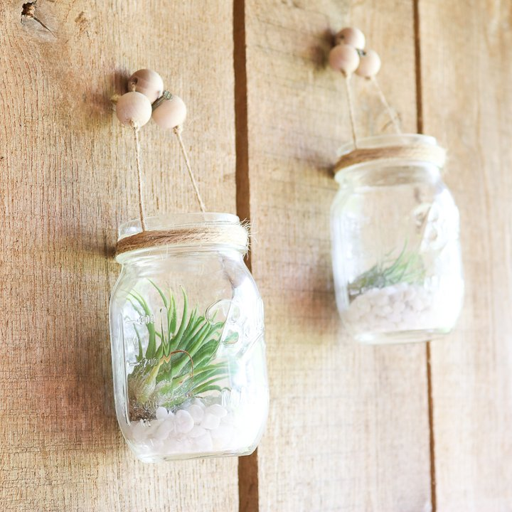 air plant hangers from mason jars