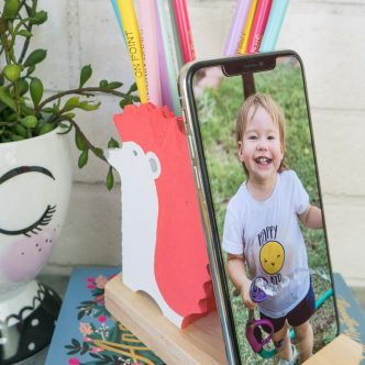 hedgehog phone holder