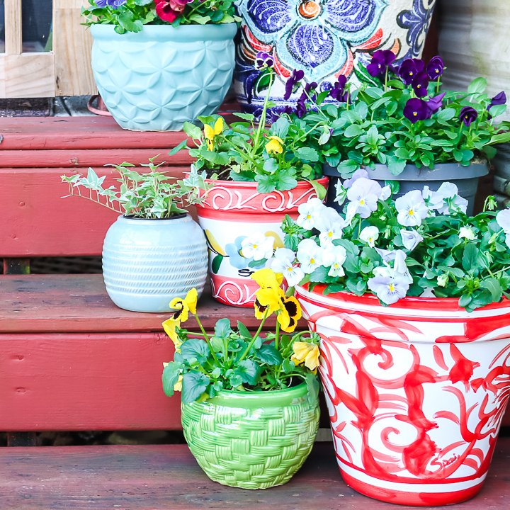 "différentes tailles de jardinières ""class ="" wp-image-70916 ""srcset ="" https://www.thecountrychiccottage.net/wp-content/uploads/2020/05/planter-ideas-4-of-6.jpg 720w, https://www.thecountrychiccottage.net/wp-content/uploads/2020/05/planter-ideas-4-of-6-300x300.jpg 300w, https://www.thecountrychiccottage.net/wp-content/uploads /2020/05/planter-ideas-4-of-6-150x150.jpg 150w, https://www.thecountrychiccottage.net/wp-content/uploads/2020/05/planter-ideas-4-of-6- 360x361.jpg 360w, https://www.thecountrychiccottage.net/wp-content/uploads/2020/05/planter-ideas-4-of-6-332x332.jpg 332w, https://www.thecountrychiccottage.net/ wp-content / uploads / 2020/05 / planter-ideas-4-of-6-500x500.jpg 500w, https://www.thecountrychiccottage.net/wp-content/uploads/2020/05/planter-ideas-4 -of-6-610x610.jpg 610w ""tailles ="" (largeur max: 720px) 100vw, 720px"