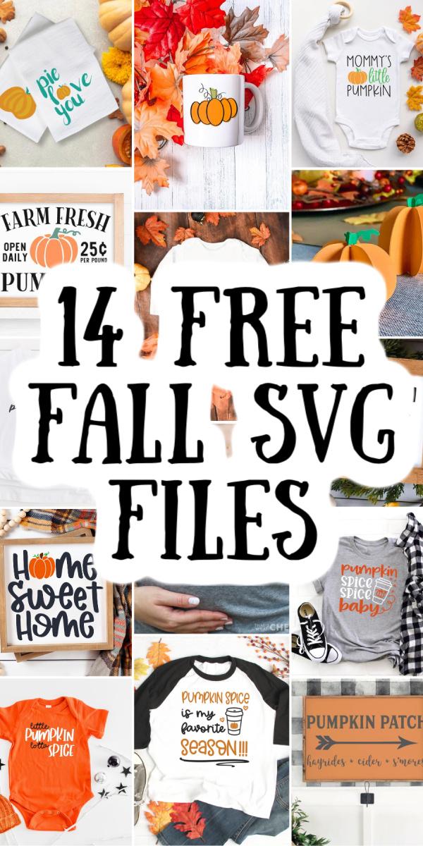 14 free fall svg files