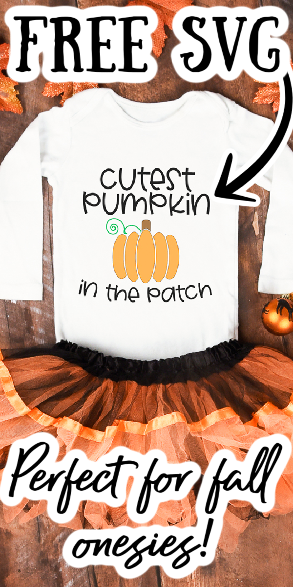Free pumpkin cut file for a cricut