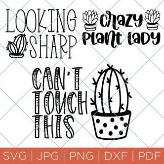 cactus SVG files