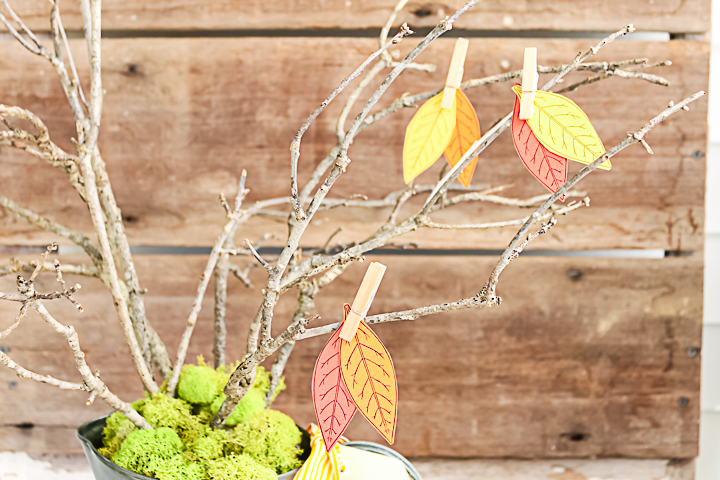 adding fall leaves with clothespins