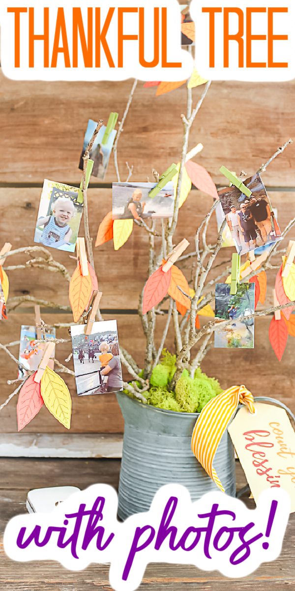 Make this DIY thankful tree for your Thanksgiving and fall home decor. Add pictures to show what you are thankful for this year! #thankfultree #thanksgiving #fall #homedecor