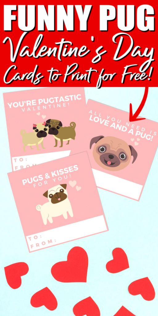 funny pug valentines day cards