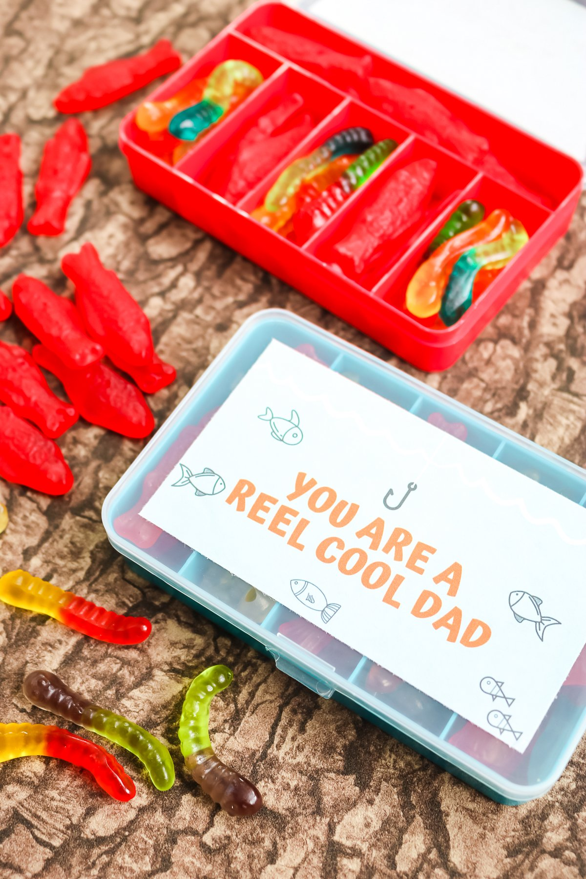 father's day fishing gifts for dad