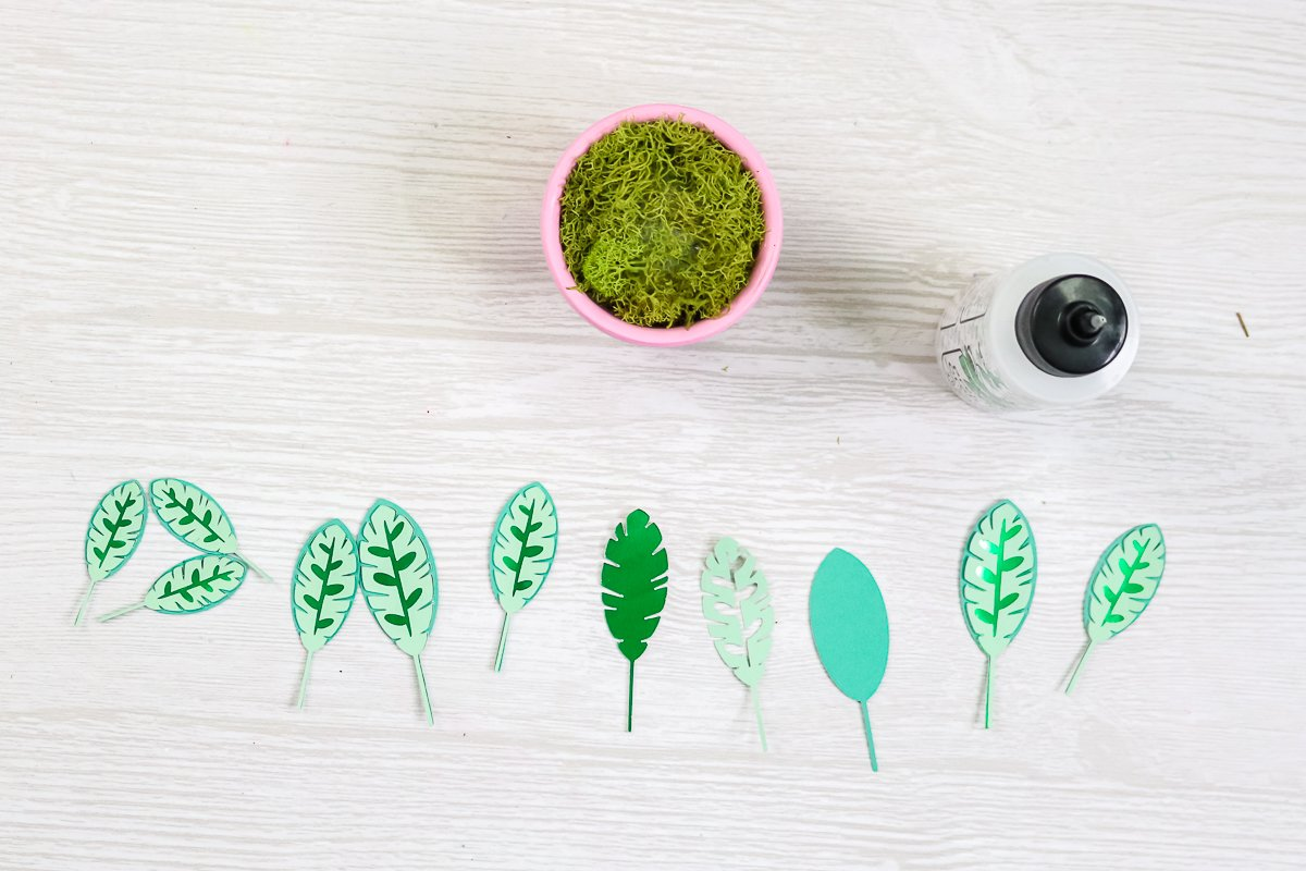 assembling leaves of paper plant