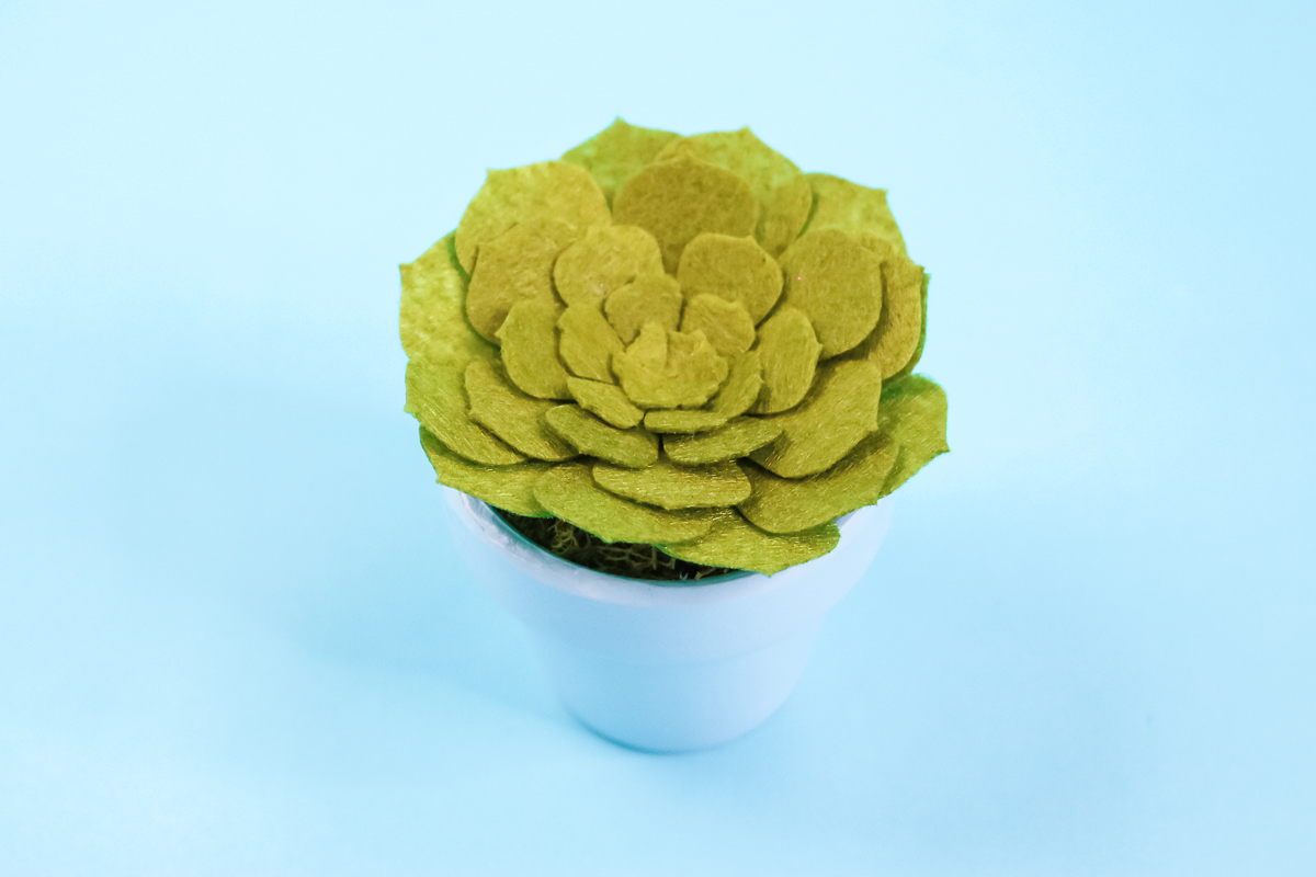how to make a felt succulent