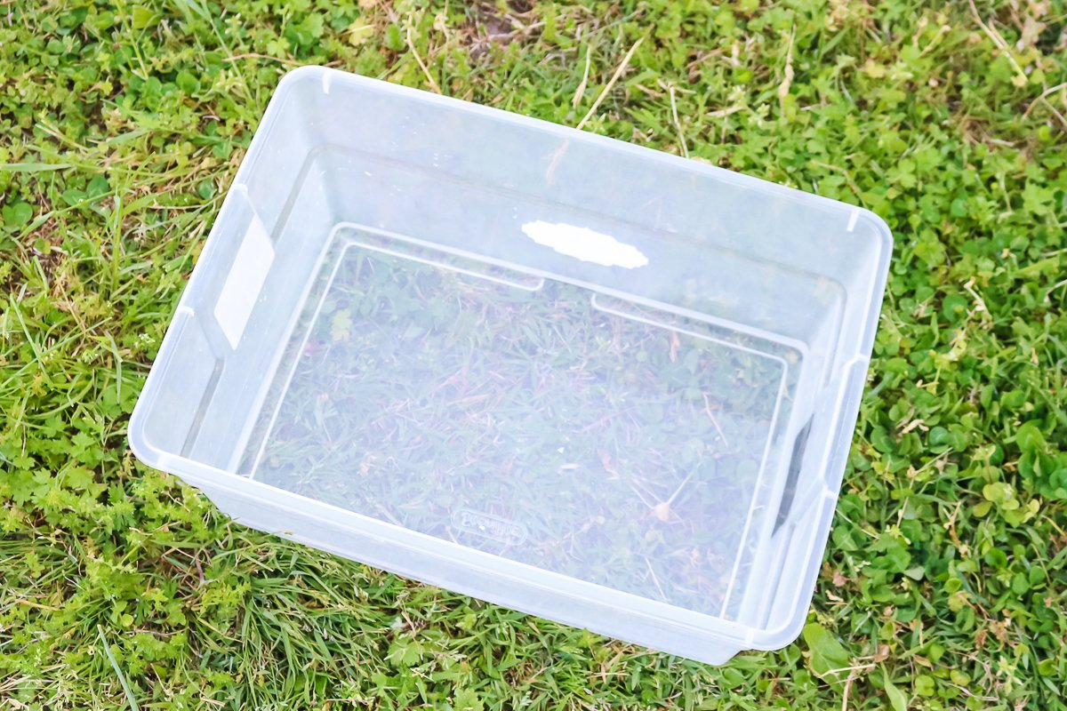 hydrogen peroxide and water mixture in a clear tub
