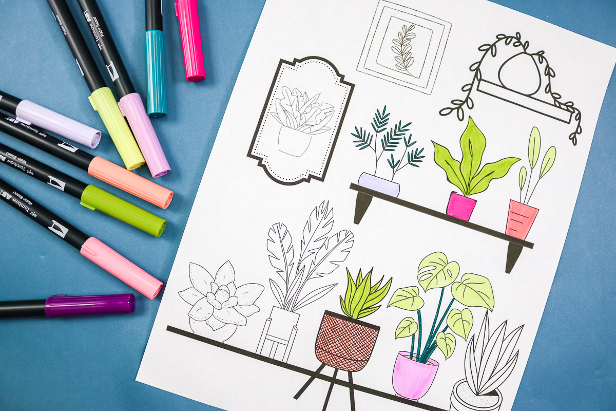 adult coloring page with house plants