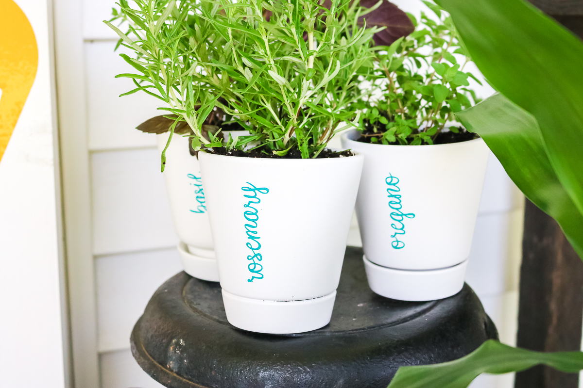 planters with vinyl markers